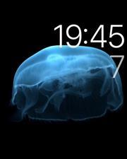 Apple Watch全球首发评测:续航到底咋样?的照片 - 21