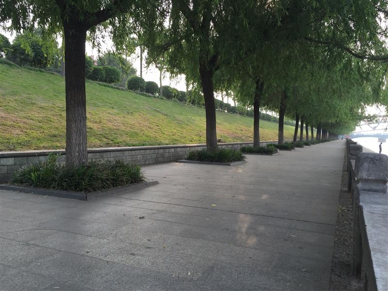 华为新旗舰P8详细评测 夜景秒iPhone 6!的照片 - 70