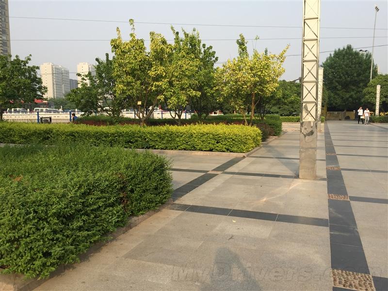 华为新旗舰P8详细评测 夜景秒iPhone 6!的照片 - 66