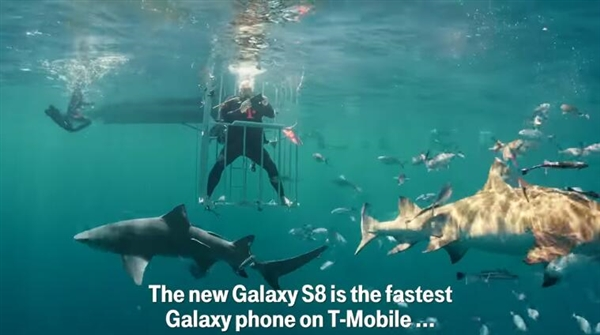 三星S8水下开箱:竟然引来了鲨鱼群