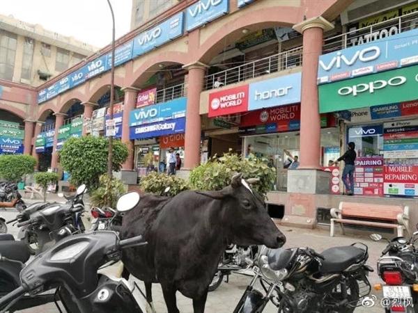 OPPO、vivo线下有多牛?印度街道全部沦陷