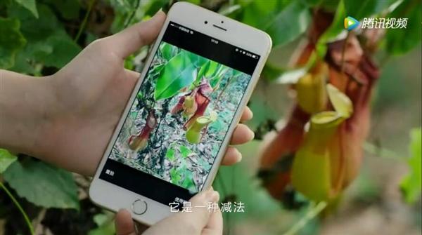 微信小程序首部广告片的照片 - 7