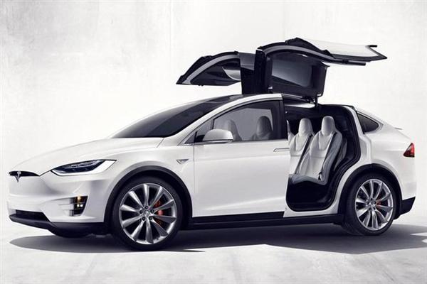 特斯拉Model X车内听到猫叫:保险杠竟钻入一只喵星人