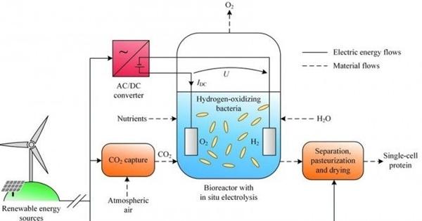 科学家神奇突破:电和空气能制造出食物