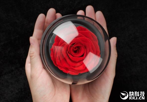 299元!米家推永生玫瑰音乐盒:送女友的最佳礼物
