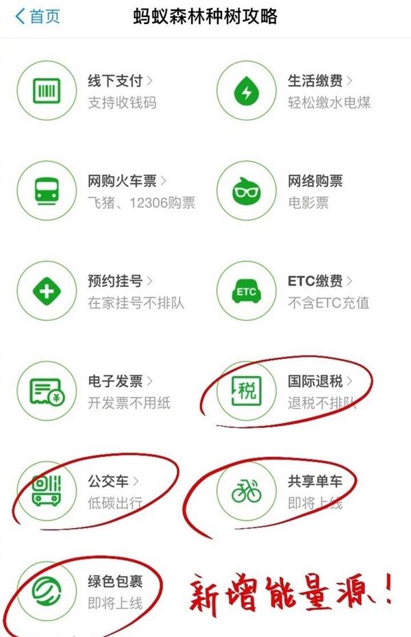 支付宝:刷公交卡、骑共享单车也能种树了