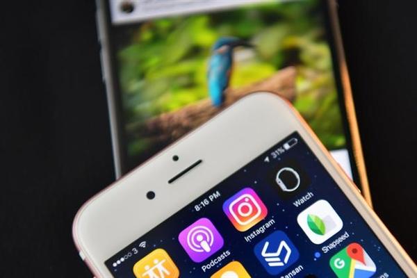 最牛照片应用Instagram被黑:女明星/网红信息被泄漏