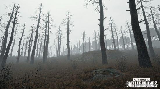 《绝地求生:大逃杀》雾天效果图 神秘寂寥酷似寂静岭