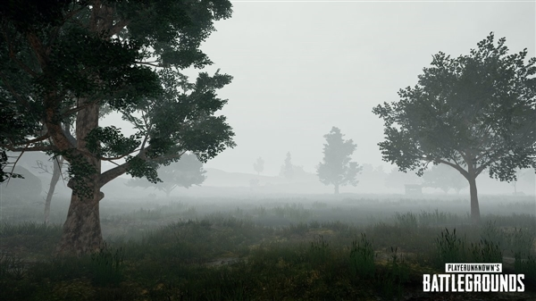 《绝地求生:大逃杀》浓雾天气就是这样:狙击已废