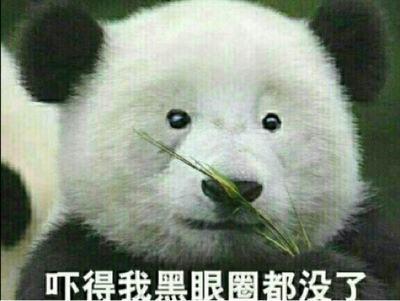 不能更囧!法国:大熊猫起源于欧洲
