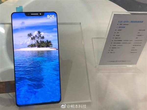 国产OLED刘海屏现身:6.18英寸 2K分辨率
