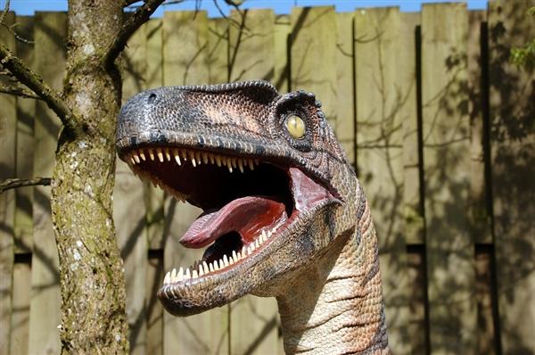 中国发现1.3亿年前恐龙蛋化石:要复活恐龙节奏