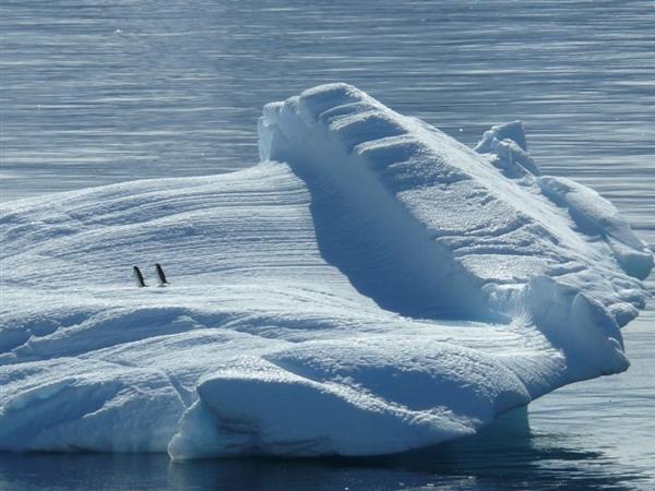 女记者展示!南极上厕所竟然是这样:不用水冲用火烧