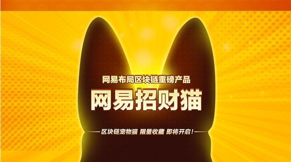 """网传""""网易招财猫""""项目夭折:测试资金正在清退"""