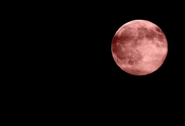1月31日月全食来袭 将出现罕见红月亮现象