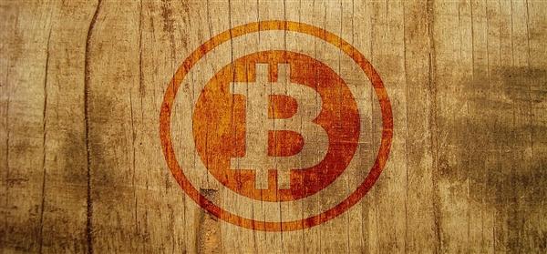卡梅伦文克莱沃斯称比特币估值未来将飙升40倍