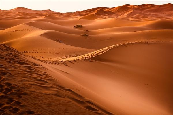 撒哈拉沙漠小镇一月连降两次雪:真是夸张