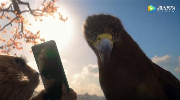 华为再现神级广告:土拨鼠用Mate 20逃过老鹰追捕