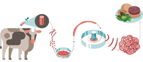 人工肉、3D打印食品:你真的敢吃吗?