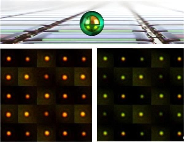 剑桥大学钻研出了像素仅有主流百万分之一大的软性彩色表现屏