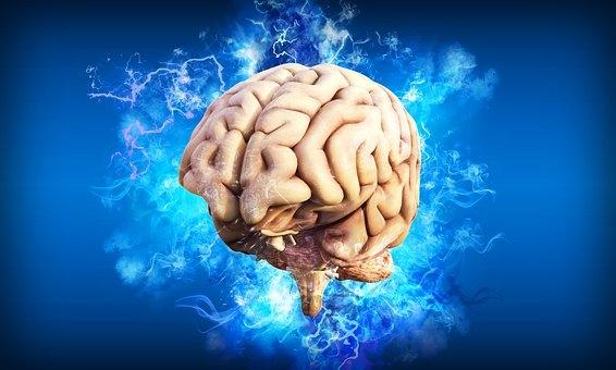 研究发现:一种新型装置可以通过智能手机来控制神经回路