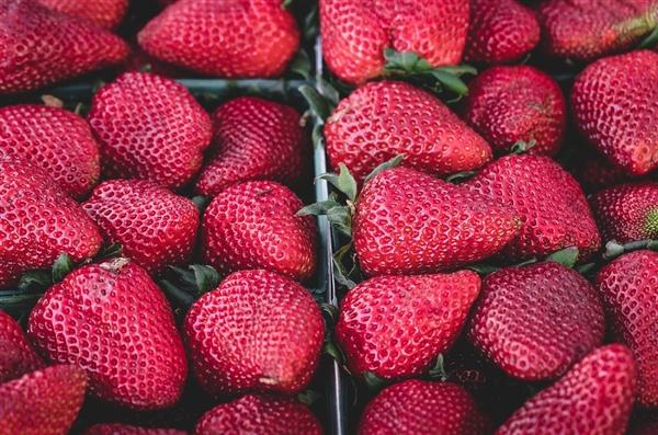 什么是最健康的食物?这是营养行家给的答案