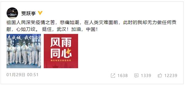 贾跃亭:故国人民深受疫情之苦 无力做贡献心如刀绞