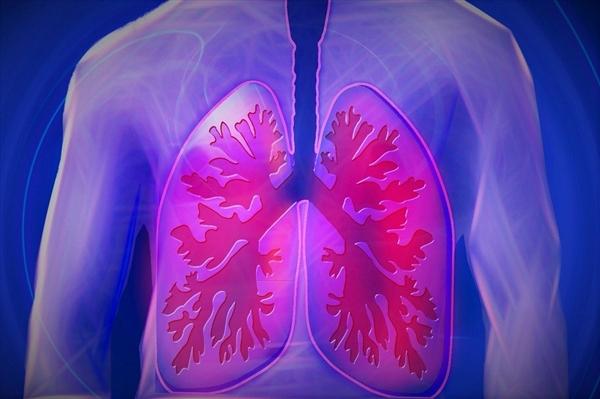肺热不只影响肺!如何挑高重症救治率?