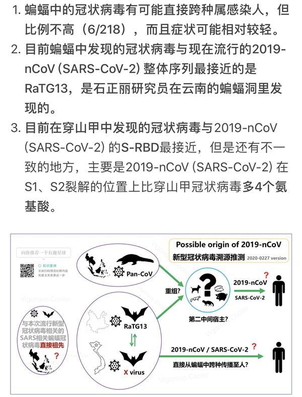 为什么新冠疫情不一定发源于中国?