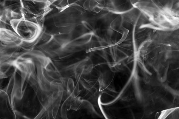 日本科学家钻研发现:黑黑有助于忘失踪痛心