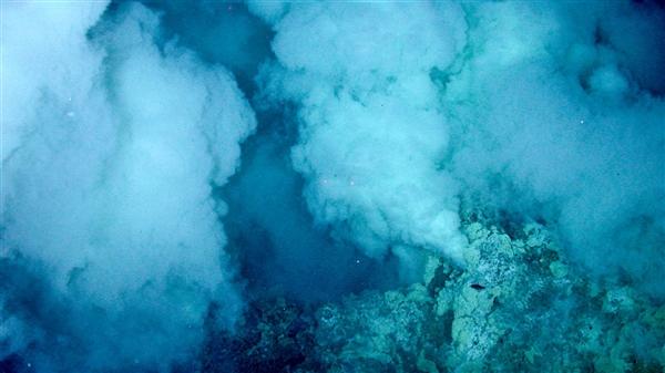 地球生命到底那里来?能够是高温高压的海底