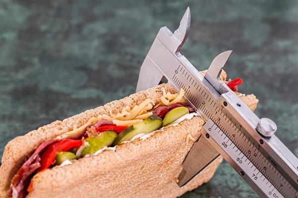 减胖还能赢利!公司月薪万元招减胖体验师:还有1元/g的挑成
