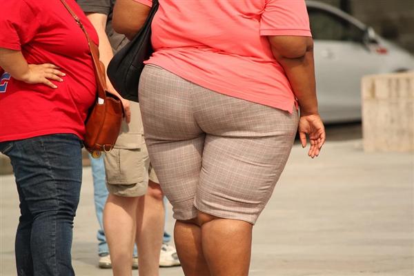 美国肥子限制不住了!行家称2030年成年人肥子将占人数一半
