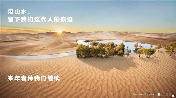 为了环保种下6万多株胡杨!华为去年许下的承诺兑现