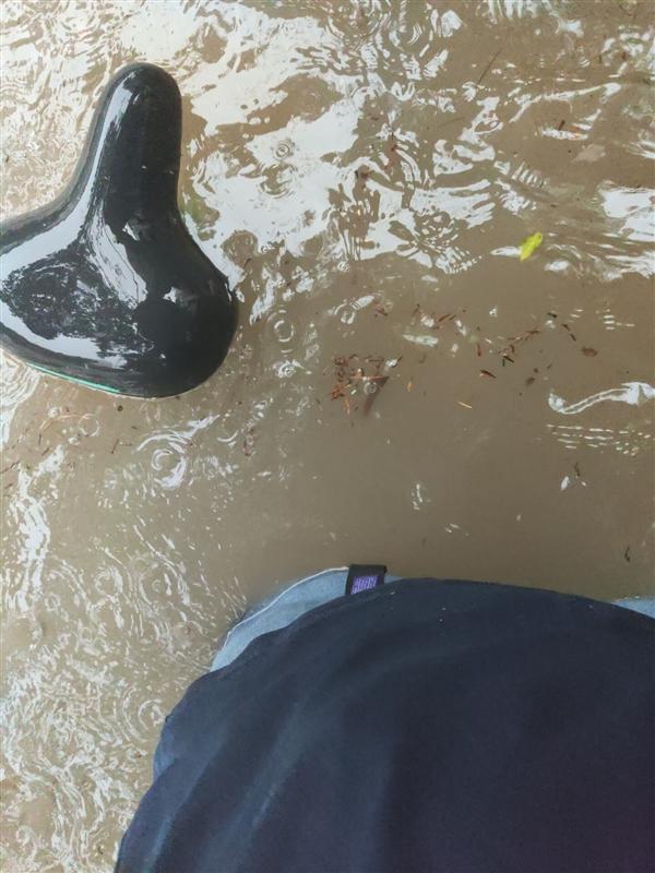 河南暴雨破极值 市民爬树少林被淹:网友感叹活久见