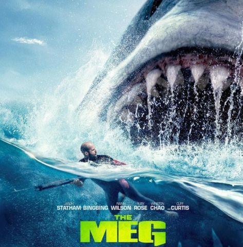鲨鱼海洋电影_电影里令人胆寒的巨齿鲨:真是水里最凶猛的动物吗?-巨齿鲨 ...