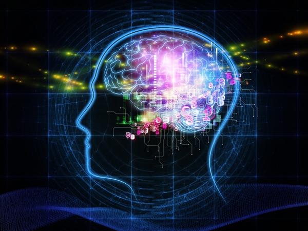 脑植入微芯片可以在未来五年内实现超级智能