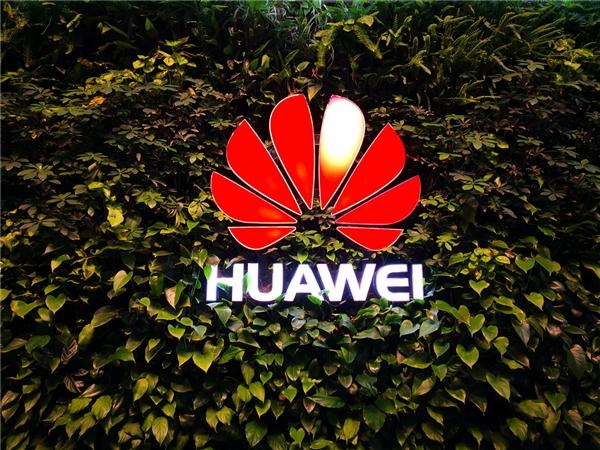 美国半导体公司有多依赖中国市场?高通/NV/Intel亮了