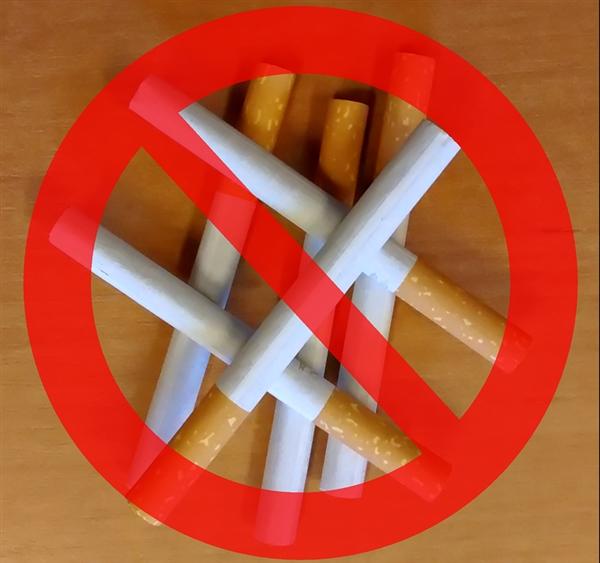 世卫安排发布2019年《全球烟草盛行陈述》