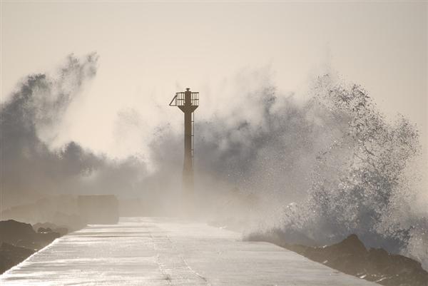 2667袋福岛核污染物被洪水冲走 当地政府已找回6袋