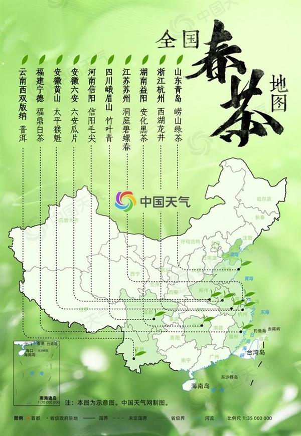 全国春茶地图出炉:我国十大春茶一览 江南茶区最集中