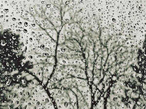 今日谷雨:全国多地中到大雨 局部暴雪