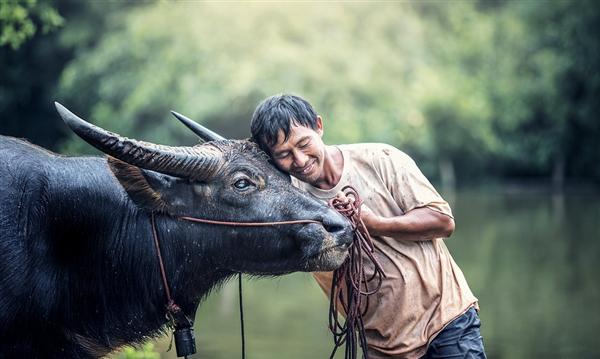 高学历农民需求高涨:灌溉岗月薪上万 有岗位年薪56万元