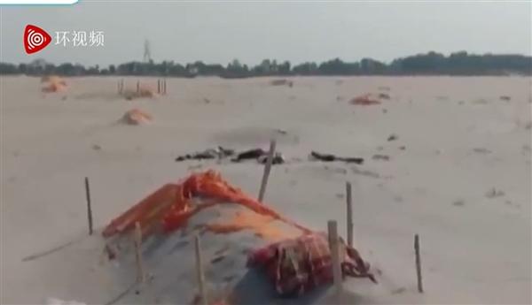 人间炼狱!印度恒河岸边惊现近500具尸体