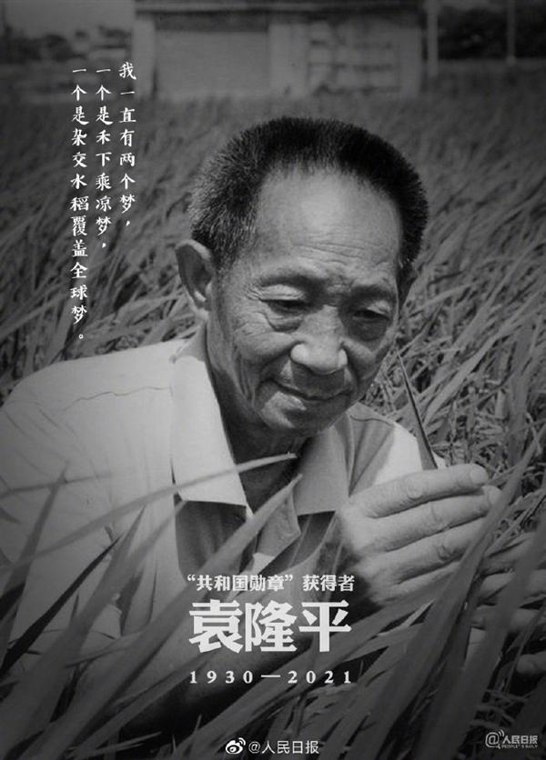 """直播:禾下乘凉梦 送别袁隆平!""""杂交水稻之父""""一路走好"""