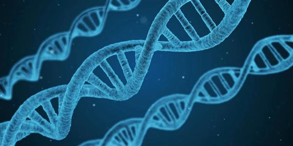 时隔20年!科学家完成史上最完整人类基因组测序