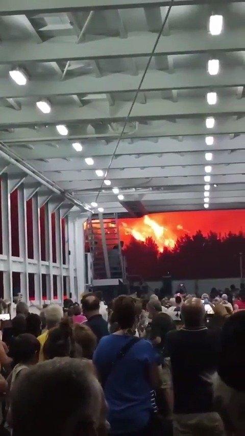 希腊山火失控 天空被火光映红:现场视频显示仿佛灾难片开场