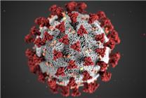 新研究称新冠病毒或一周突变一次:病毒存活率可能降低