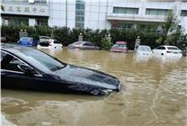 6个月的特斯拉仅7.5万元!媒体曝郑州水淹二手车隐秘黑产