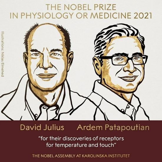 The first Nobel Prize this year! Solving the mystery of human perception. Why has the Nobel Prize been paid out in 120 years?